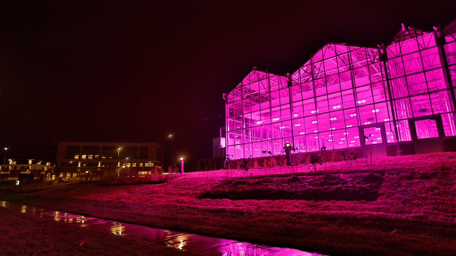 Innovation Campus Phenotyping facility at night