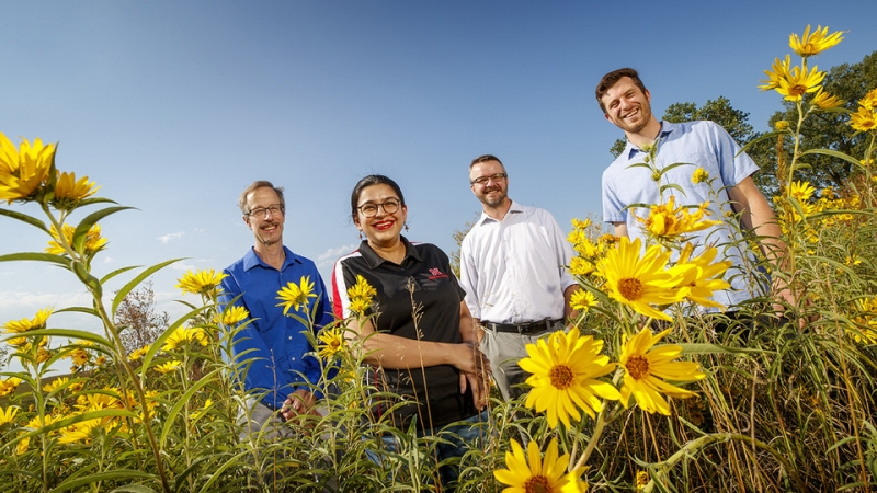 Early detection of changing ecosystems is aim of Nebraska-led research