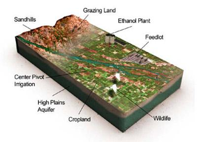 Cutaway view of Sandhills and cropland impacting the Platte River and Aquifer